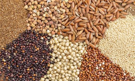Top 5 Grains Which Are Gluten-Free And Healthy