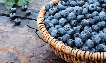5 Superfoods That Are Really Good For You