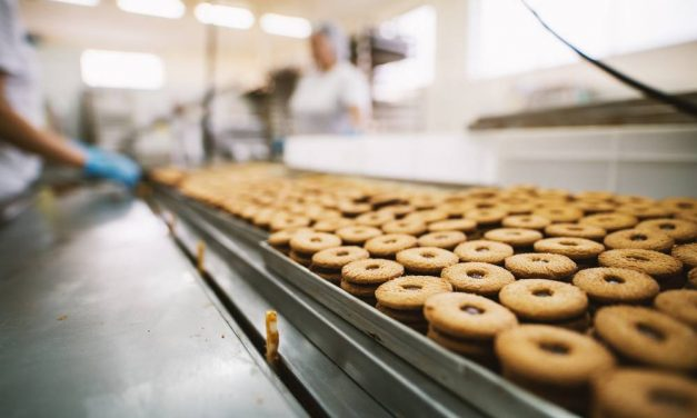 Questions To Ask Yourself Before You Enter The Food Industry
